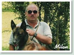 belgian shepherd nc belgian malinois dogs u0026 malinois puppies c u0027villa rowehaus kennels