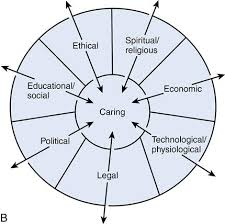 Theory of bureaucratic caring   Nurse Key B  Subsequent Grounded Theory Revealing Differential Caring   A from Ray  M  A       a   A study of caring within an institutional culture  Dissertation