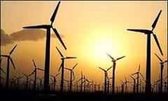 Relatório diz que ativismo ecológico dá resultados | BBC Brasil ...