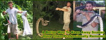 How Do You Get Rid Of Possums In The Backyard by Eight Ways To Get Rid Of Snakes
