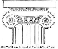 abaküs kolonu nedir
