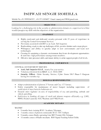 Resume Cv Format  curriculum vitae sample   how to write a     Multimedia   Media CV Template