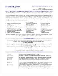 Recruiter Consultant Resume Resume For Information Technology Consultant 12 Useful Materials