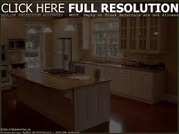 kitchen cabinets with glass doors on both sides tehranway decoration