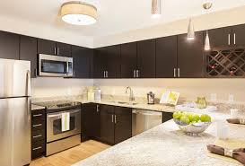 How To Install Kitchen Cabinets by Kitchen Select Kitchen Cabinets 4 In Pulls Best Paint For