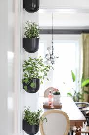 modern kitchen herb garden inspired by charm