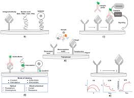 biosensors on chip a topical review iopscience