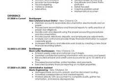 Sample Bookkeeping Resume by Sample Profile Summary For Resume Haadyaooverbayresort Com