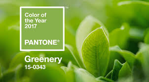 Pantone 2017 by Greenery Announced Pantone U0027s Color Of The Year 2017 Shop Lc