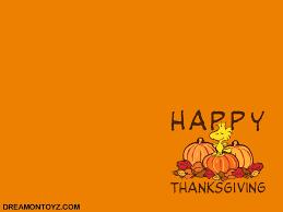 free funny thanksgiving pictures funny thanksgiving desktop wallpaper wallpapersafari
