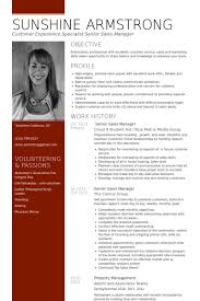 Senior Sales Manager Resume Samples   VisualCV Resume Samples Database Senior Sales Manager Resume Samples