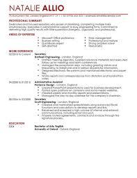 Executive Resumes   CV   good CV words to use For comprehensive CV writing services  Horizon Mechanical