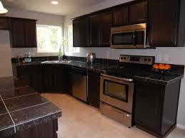Traditional Kitchen Designs Kitchen Design My Own Kitchen Best Kitchen Interiors Modern