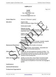 Resume Examples  Example CV Template for Personal Statement with