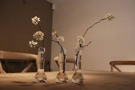 flower arrangements the modern gardener