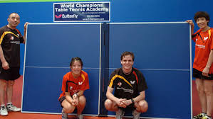 Topspin Table Tennis by World Champions Table Tennis Academy Santa Clara California