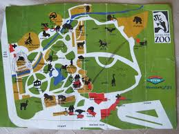 Phoenix Zoo Map by Auckland Zoo Photo Galleries Zoochat