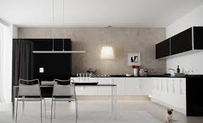 Kitchen Cabinet Inside Designs by Perfect Black And White Kitchen Cabinets Inside Design Inspiration