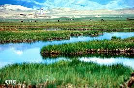 تلوث البيئة  يهدد الجنس البشرى Images?q=tbn:ANd9GcTSmvawoEdBIbJpvC4_lLNqJ1CWkPm14rtAD8LIeNOCuH6WQ693iw