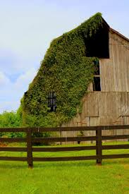 81 best barns images on pinterest architecture old barns and