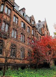 Colorado university admissions essay     essay on my philosos