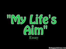 Custom Essay Writing Service With Benefits Essay