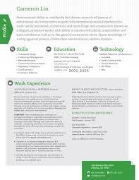 Employment  Resume design service   loftresumes com