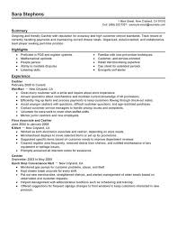 Astonishing How To Write Summary For Resume   Brefash