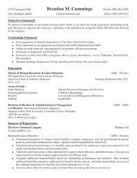 mcdonalds job description resume brandon cummings detailed resume 2010