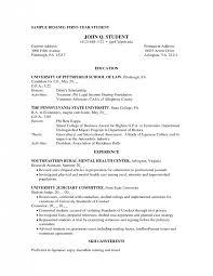 Resume Student Affairs   Resume Maker  Create professional resumes     happytom co curriculum vitae format for college students curriculum vitae sample