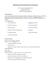 What Is Resume Profile Summary  background examples professional         Web Developer Resume Example With Professional Experience And Summary  Of Skills  Sample
