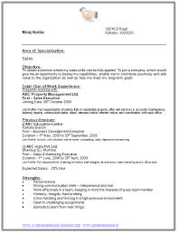 Sample Resume Templates With No Work Experience Cv For    Year Old School  Leaver Template High     Resume Maker  Create professional resumes online for free Sample
