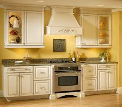 Elegant Kitchen Cabinets Easy Kitchen Cabinet Resurfacing All Home Decorations