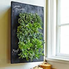 Outdoor Wall Planters by Living Room Grovert Living Wall Planter Remarkable Interior