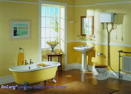 amazing of simple bathroom paint colors the home design p 2910