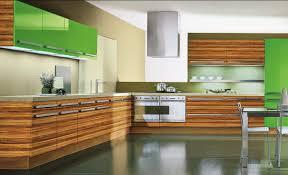 Brands Of Kitchen Cabinets by High End Kitchen Cabinets Brands Edgarpoe Net