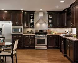 Kitchen Cabinet Colors 2014 by Kitchen Ideas Dark Cabinets Modern