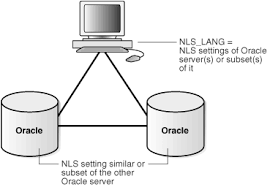 A Case Study in Database Reliability  Component Types  Usage