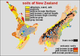Soil in New Zealand NZ soils Soils developed from the bedrock under the influence of climate and vegetation  Clays and loams developed from both sedimentary rocks  yellow brown
