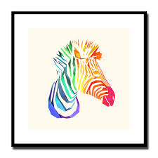 popular rainbow zebra decor buy cheap rainbow zebra decor lots