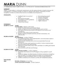Writing A Summary For Resume Best Auditor Resume Example Livecareer