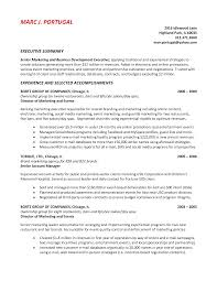 Summary Of Qualifications Sample Resume by Sample Of Resume Summary Resume For Your Job Application
