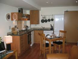Simple Kitchens Designs Kitchen Astounding Small Apartment Kitchen With Red Gloss