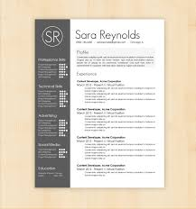 Job Resume Word Format professional professional resume template doc