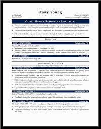 Resume With Summary  resume summary or objective   template     Resume Qualifications Summary Example   ALEXA RESUME   resume with summary