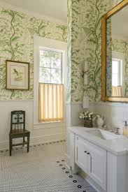 Wainscoting Ideas Bathroom by 266 Best Bathrooms Images On Pinterest Room Bathroom Ideas And Home