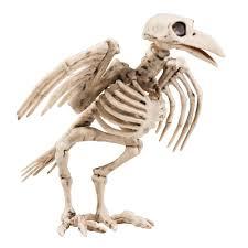 Halloween Skeleton Props by Halloween Horror Scary Large Bone Skeleton Raven Crow Bird Party