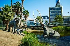 10 fascinating facts about the la brea tar pits mental floss