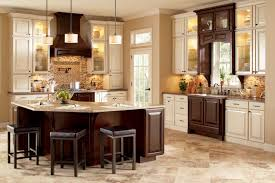 Kitchen Cabinet Colour Cabinet Cook Top Kitchen Color Schemes Cabinets Drawer Using Cup
