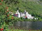 International Homestay - IRELAND